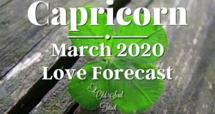 CAPRICORN ♑️ Love Forecast 🥰 Tarot Reading - March 2020: NO MATTER THE PATH YOU WILL FIND HAPPINESS