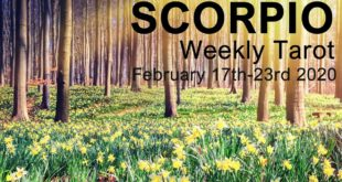 """SCORPIO WEEKLY TAROT READING """"YOUR KARMIC PATH BECOMES CLEAR SCORPIO""""  February 17th-23rd 2020"""