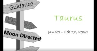 TAURUS Monthly Jan 20 - Feb 17, 2020 MOVING TOWARD A FATED MEETING (Nice!)