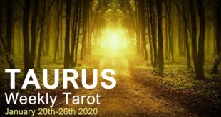 "TAURUS WEEKLY TAROT  ""PHOENIX RISING AGAIN TAURUS!""  January 20th-26th 2020"