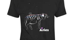 This Aries Constellation T Shirt Collection is one of our favorites, and it won'...