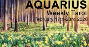 """AQUARIUS WEEKLY TAROT READING  """"NEW LOVE IS COMING YOUR WAY AQUARIUS!""""  February 17th-23rd 2020"""