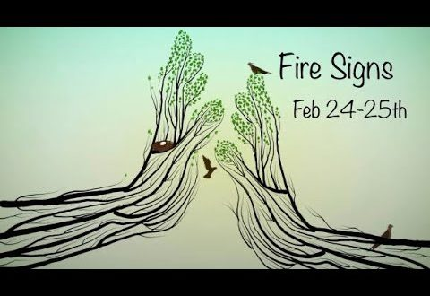 "Fire: Sagittarius Aries Leo Daily Love February 24-25th ""big changes ahead. The wheels in motion!"""
