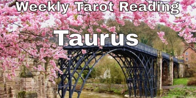 ♉ Taurus weekly tarot 📚| Something hidden will be revealed | Mar 1-7