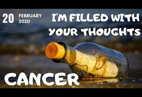 Cancer daily love tarot reading 💗 I AM FILLED WITH YOUR THOUGHTS(MESSAGE FROM YOUR PERSON)💗20 FEB