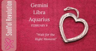 GEMINI LIBRA AQUARIUS *Wait* for the right moment, AIR Sign Daily Tarot February 8