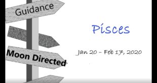 PISCES Monthly Jan 20 - Feb 17, 2020 BEWARE OF THE TRICKSTER