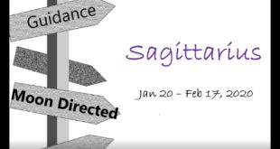 SAGITTARIUS Monthly Jan 20-Feb 17, 2020 WHERE ARE YOU GOING?! THE CHOICE IS YOURS!