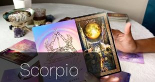 SCORPIO FEBRUARY 2020 | THEY FEAR YOU MIGHT REJECT THEM .... - Scorpio Love Tarot Reading