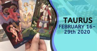 TAURUS   You're Making It Happen ~ Feb 16-29th 2020 Tarot Reading