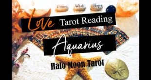 AQUARIUS LOVE TAROT -  THIS PERSONS A LITTLE TOO MUCH!  THEY NEED TO COME TO YOU RIGHT...