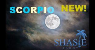 #Scorpio SPEECHLESS 😶!!! PASSION! Tarot love reading January 2020 horoscope Soulmate twin flame 🔥NEW