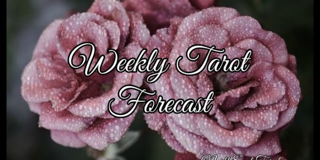 Aquarius ♒️ Weekly Forecast May 11th-17th 💚🧘🏼♀️♾