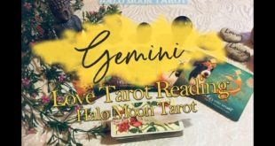 GEMINI LOVE TAROT -  THEY ARE READY FOR CHANGE. THEY WANT TO REACH OUT