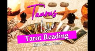 TAURUS LOVE TAROT READING -  HERE THEY COME!  YOU KNOW WHAT TO DO