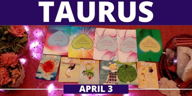 Taurus daily love tarot reading 💖THEY HAVE PLANNED THEIR FUTURE WITH YOU...💖 3 APRIL 2020